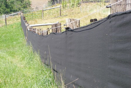View Blocks:  Saving your fence from Soay-bashing in breeding season