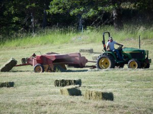 Two-string bales from our very own pastures