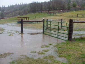 It's a good thing no one was coming to pick up sheep or they would have needed a boat rather than a trailer