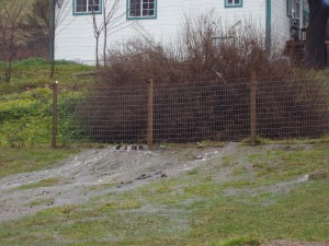 Optical illusion, thankfully all this water did not run under the white farmhouse!